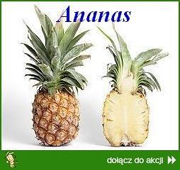 Ananasowe szaleństwo