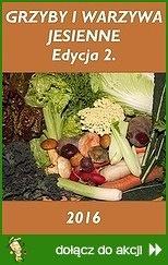 Grzyby i warzywa jesienne 2016