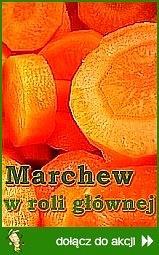 Marchew w roli głównej