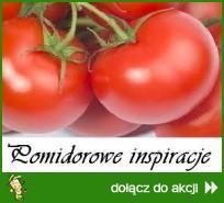 Pomidorowe inspiracje